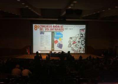 Congreso de voluntariado. Fibes. Sevilla